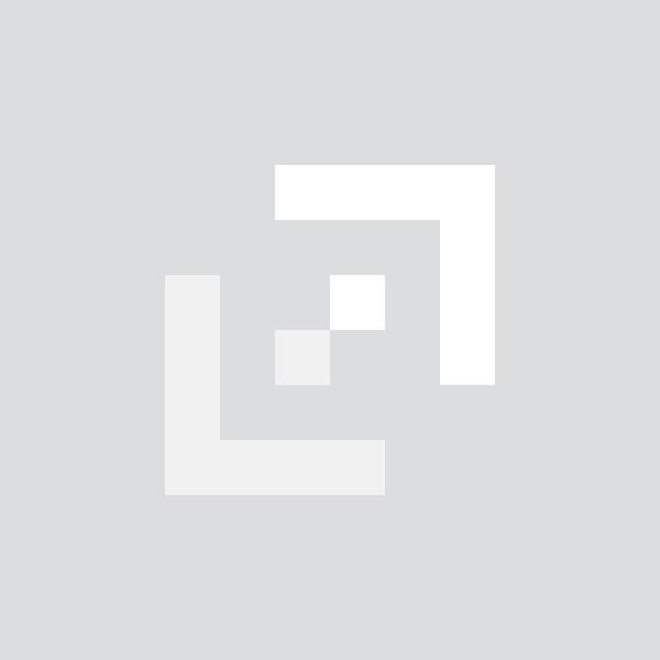 Spencer Fane default logo
